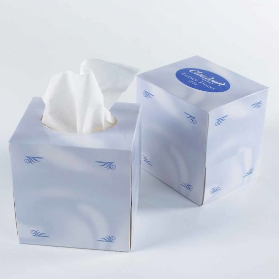 Cloudsoft 2ply Cube Tissues - 24 Packs Of 70 Tissues PAP6001