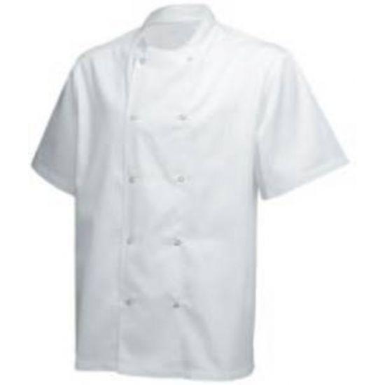 Short Sleeve Basic Jacket White L IG PEGA102/L