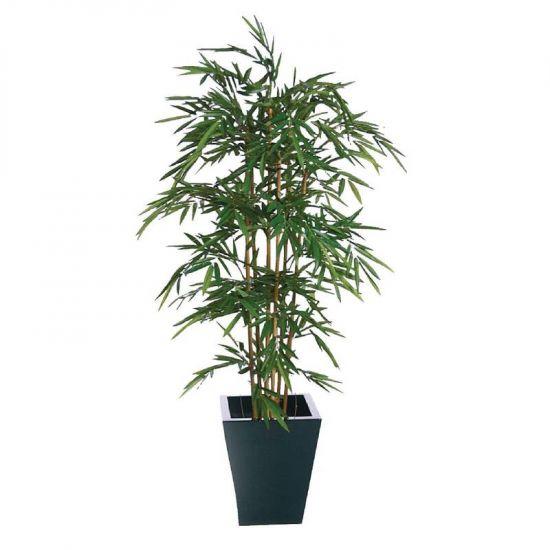 Natural Bamboo 1200mm URO CC574