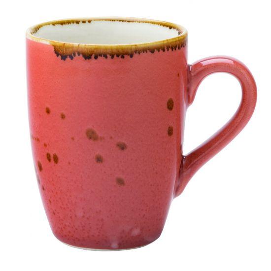 Earth Cinnamon Mug 12oz (34cl) Box Of 6 UTT CT2039-000000-B01006